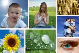 RIMINI naturopatia e counseling