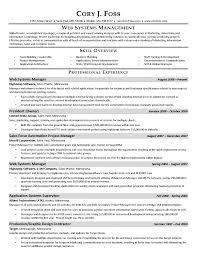 Digital Marketing Resumes  resume samples for sales and marketing
