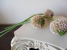 Floral Arrangement Supplies by 3 Allium Stems Pink Light Green 21