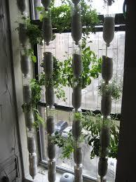 12 edible gardening hacks delectable edibles you can grow indoors