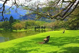 Lago Images?q=tbn:ANd9GcS5W63dSIsZ9bHs_vuW0iogpeAYFpbmIhaEEudg5eTNr25w6__E