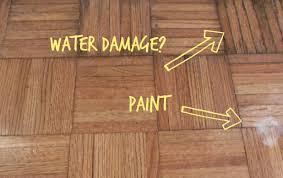 Floor And Home Decor Tips Freshen Up Your Home Flooring With Parkay Floor