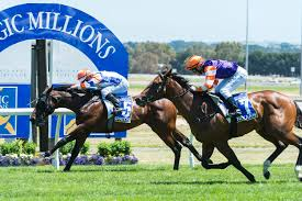 ||6yo hussy|Upon retiring as a 4YO, Free Eagle was Timeform rated 128, above Criterion, Winx, Exosphere, Mongolian Khan and Brazen Beau. Free Eagle will stand at a fee ...