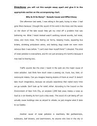 Essay Outline Format For A Research Paper Apa Phrase Research