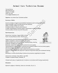 Best Tech Resume by Surgical Tech Resume Objective Objective For Resume Secretary