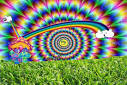 trippy pot pictures