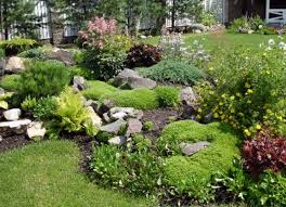 Small Rock Garden Pictures by Rock Garden Design Gallery Of Design With How Fun How To Make A