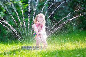 sprinkler images u0026 stock pictures royalty free sprinkler photos