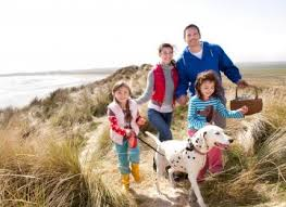 Cottages To Rent Dog Friendly by Dog Friendly Cottages In Cornwall Cornish Horizons