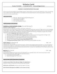 Sales Representative Responsibilities Resume  see a sample of a     Example Resume And Cover Letter   ipnodns ru