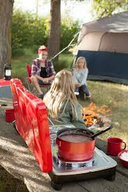 planning a backyard camping adventure