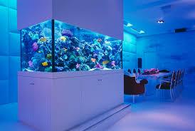 extraordinary modern fish tank images design inspiration tikspor