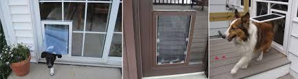 catflap in glass door pet door in glass door 807 best doors images on pinterest doors
