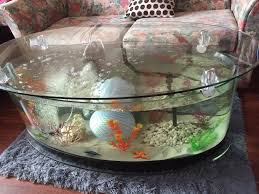 coffee table fish tank pets for sale pets for sale