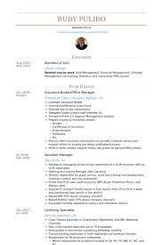 Sample Resume Of Office Administrator by Insurance Broker Resume Samples Visualcv Resume Samples Database