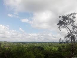 Cerros de Amotape National Park