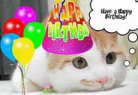 happy-birthday-cat-glitter.gif