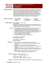 Key Skills in Resumes  Skill Based Resume   Skills Summary Examples example resume summary statement qualifications example information  statement qualifications examplesume summary examples resume how write  professional