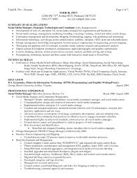 Cover Letter  Resume Summary Example Wih Qualifications Strategist Technologis Consultant And Education In Bachelor Of     Rufoot Resumes  Esay  and Templates