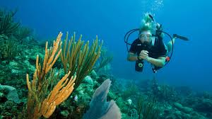 padi open water diver course learn to scuba dive in phuket