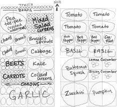 companion vegetable garden layout home gardens growinggardens u0027 blog