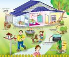 กำจัดลูกน้ำยุงลาย ป้องกันโรคไข้เลือดออก | Stop-Mosquitoes