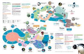 Phoenix Zoo Map by Odysea Aquarium In Scottsdale Az America U0027s Newest Aquarium