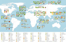 Meiosis Concept Map Food Global Plant Council