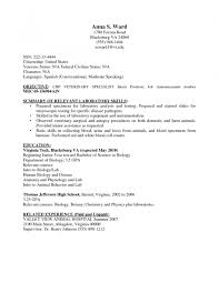 Resume For Call Center Jobs by Curriculum Vitae Templates For Thank You Letters Cashier Job
