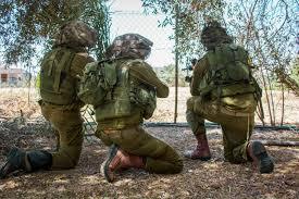 Guerre de Gaza de 2014