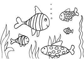 fish sea horse coloring pages royalty free stock images inside