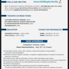 Free Resume  Professional Resume Format      Resume Writing Service Sample  professional resume writing service Kaii