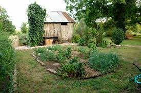 Garden Kitchen Ideas Kitchen Garden Design Gallery Of Edible Garden Ideas With Kitchen