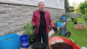Manure For Vegetable Garden by Horse Manure For The Garden Youtube
