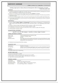 Sales Resume India   Sales   Sales   Lewesmr