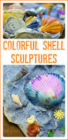 45 best shells in preschool images on pinterest beach crafts