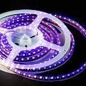 Advanced Search : LED Lights, LED Lighting Fixtures and LED Bulbs ...