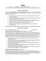 Examples Of Professional Summary For Resume by The Most Awesome Resume Professional Summary Examples Customer