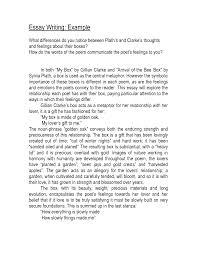 reflective essay samples doc 638826 reflective essay samples free reflection paper reflection paper writing essays reflective essay samples free