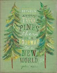ideas about John Muir on Pinterest   John Muir Quotes     Pinterest Two Pines Print   John Muir Quote   Katie Daisy