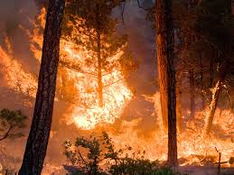 Wildfire Credit Union by Nasa Climate Models Project Increase In U S Wildfire Risk