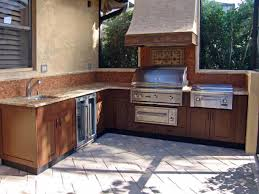 Kitchen Cabinet Inside Designs by Polymer Cabinets For Outdoor Kitchens Streamrr Com