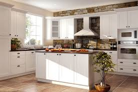 furniture breathtaking rta kitchen cabinets with stone backsplash