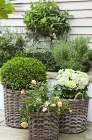 25 small gardens ideas