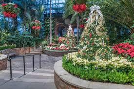 winter flower show and light garden 2014 winter wonderland
