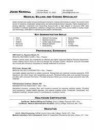 Professional Profile On Resume 100 Resume Titel 5 Categories Of A Resume Virtren Com