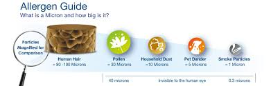 amazon com honeywell hpa200 true hepa allergen remover 310 sq