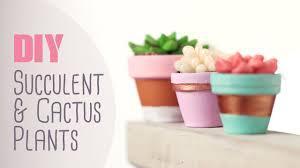 Youtube Home Decor by Diy Succulent U0026 Cactus Plants Cute U0026 Happy Home Decor Ideas