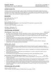 Professional Experience Examples For Resume  writing appropriate