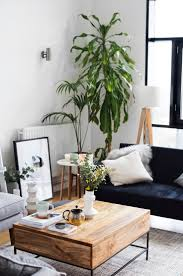 Small Living Room Decorating Ideas Pictures Best 10 Living Room Plants Ideas On Pinterest Apartment Plants